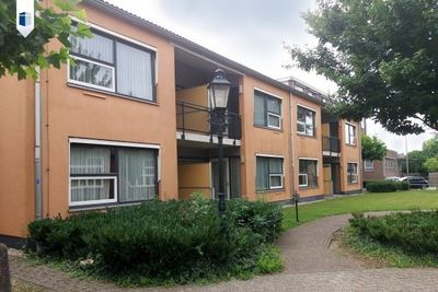 Nieuw Hollenhof, Wamel