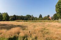 Meester Bierensweg, Prinsenbeek