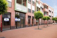 Hammerstraat, Vroomshoop