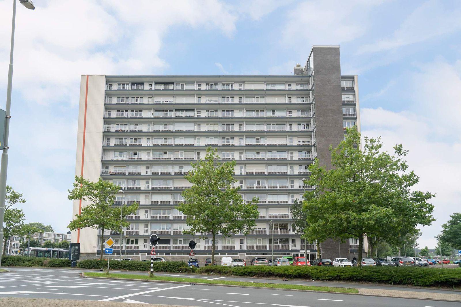 Louis Raemaekersstraat 123, Schiedam