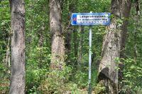 Langeloerduinen 2 63, Norg