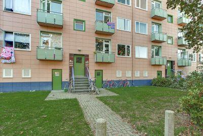 Ligusterstraat 59, Nijmegen