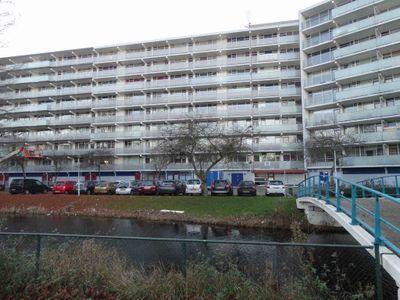 Arendshorst 158, Leiden