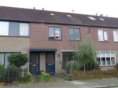 Acacia 43, Dirksland