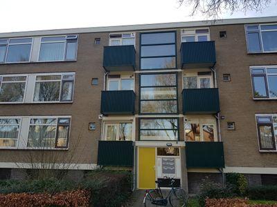 Terborchlaan 117, Alkmaar