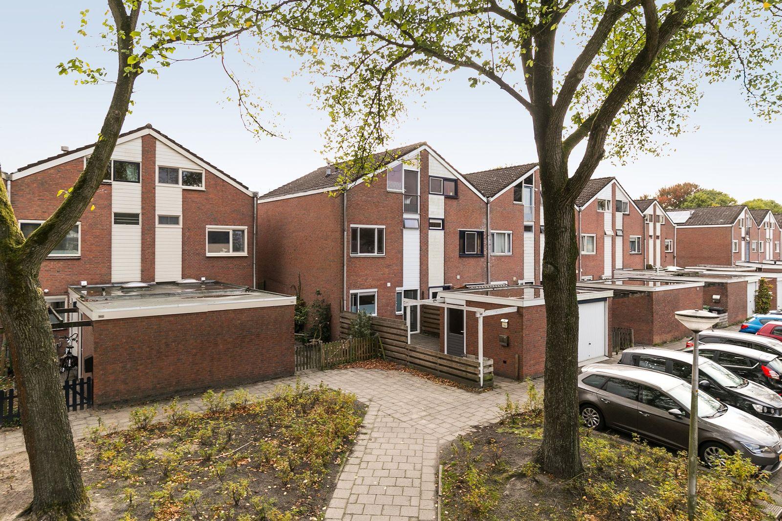 Kamgras 144, Leeuwarden