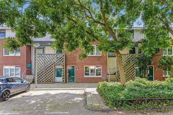 Bruinvisstraat 36, Amsterdam