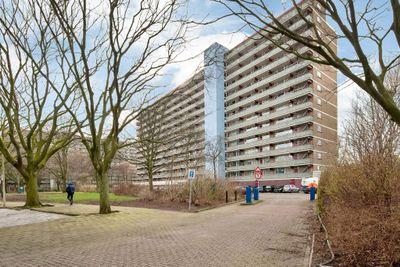 Heiloostraat 193, Den Haag