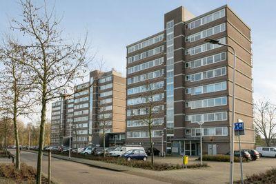 Saffierstraat 155, Alphen Aan Den Rijn