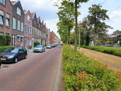 Boergoensevliet, Rotterdam