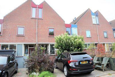 Arkplein, Alkmaar