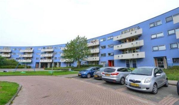 Peter Sellershof, Almere