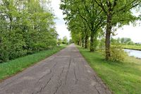 Bladderwijk OZ 0ong, Nieuw-dordrecht