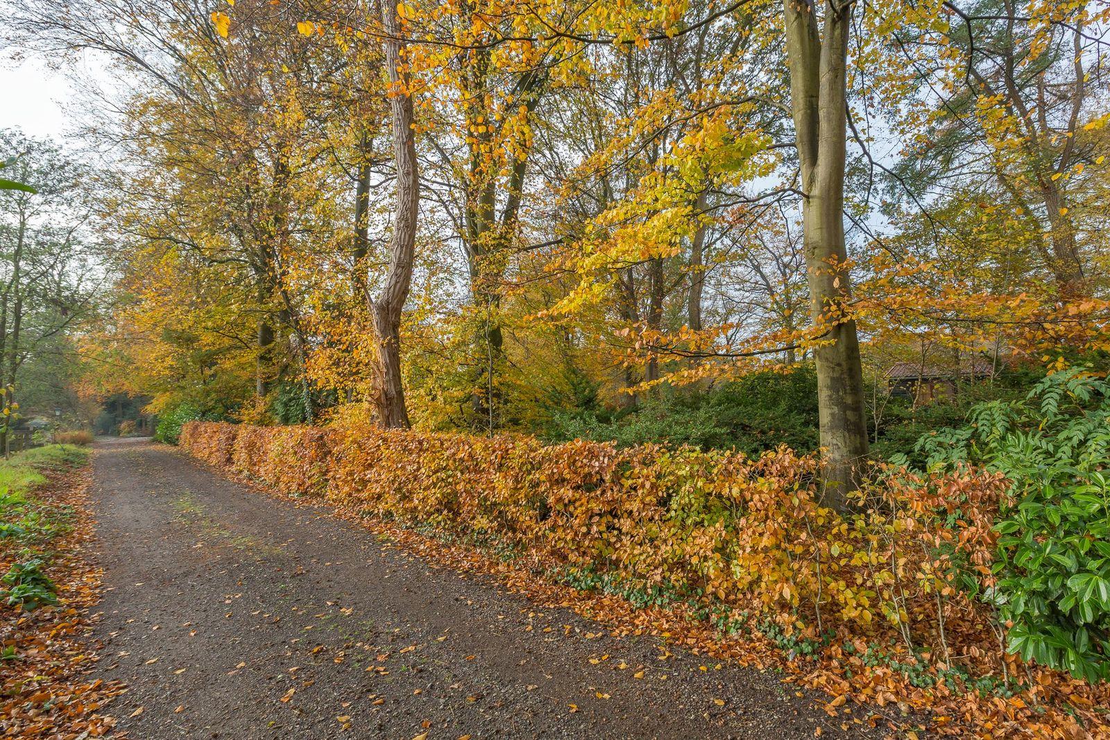 Zeegserweg 15, Schipborg