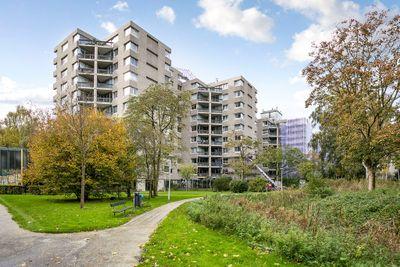 Gouden Leeuw 405, Amsterdam