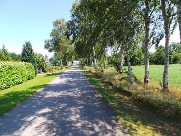S.W. de Clercqweg 10, Vlagtwedde