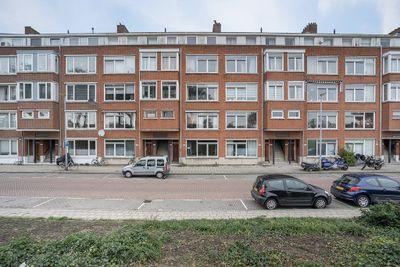 Schiedamseweg Beneden 519-A, Rotterdam