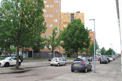 Speedwellstraat 158-1E, Rotterdam