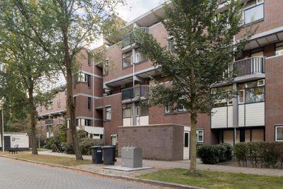 Hollandsch Diep 255, Zaandam