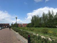 Dye Sprancke, Waalwijk