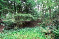 Zuursche Duinen 16, Steenbergen