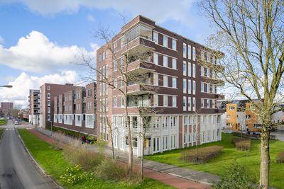 Grote Beerstraat 2023, Groningen