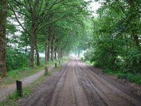Hutsebergweg 0-ong, Milheeze