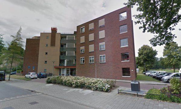 Ruwenbos, Enschede