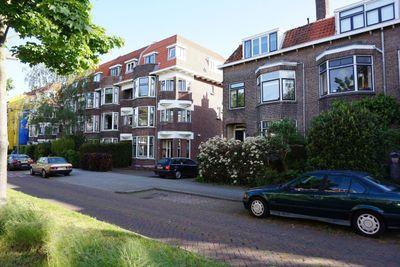 Berglustlaan, Rotterdam