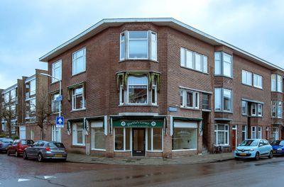 Theresiastraat 360, Den Haag