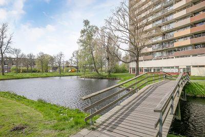 Munt 86, Heerenveen