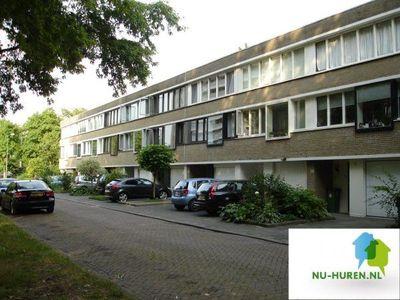 Admiraliteitslaan, Den Bosch
