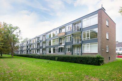 Wijnruitstraat 117, Hoogvliet Rotterdam