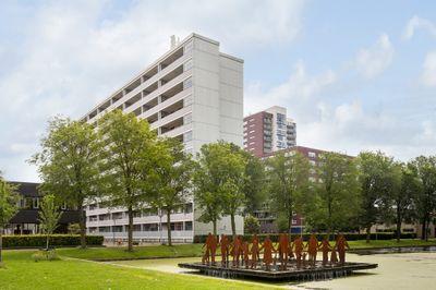 Plein 1953 165, Rotterdam