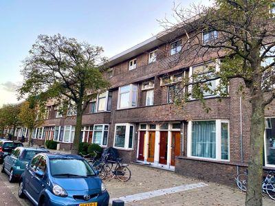 Van Ostadelaan, Schiedam