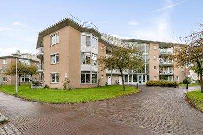 Meestoof 43, Middelburg