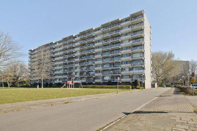 Grote Beerstraat 298, Groningen