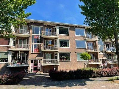 Honingboomstraat, Leeuwarden