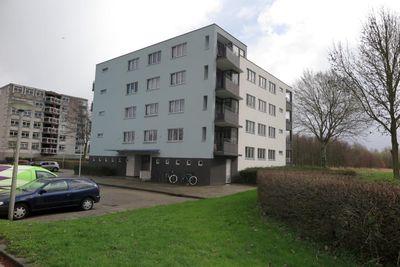 Buizerdlaan 46, Delft