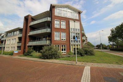 Waterjuffermeent, Hilversum