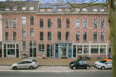 Tolhuislaan 245, Rotterdam
