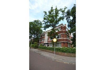 Van Kijfhoeklaan, Den Haag