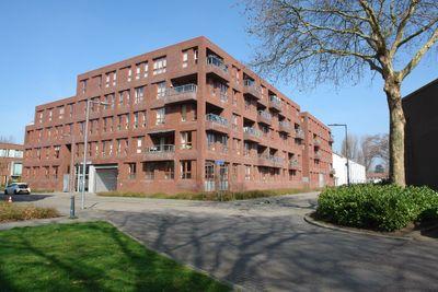 Zilverschoonstraat, Rotterdam