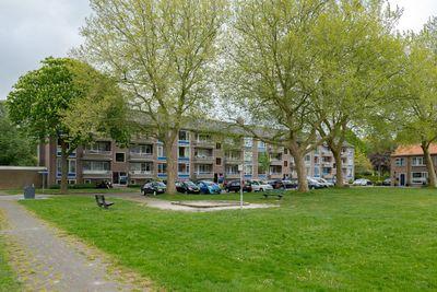 Duizendschoonstraat 11, Hoogeveen