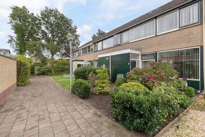Waardeel 59, Steenwijk