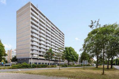 Pisuissestraat 405, Den Haag
