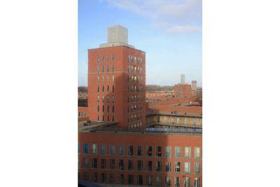 Vuursteen, Den Haag